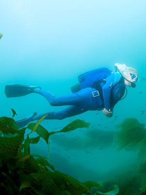 JEAN-MICHEL COUSTEAU